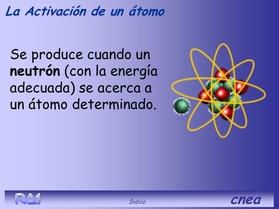 La Activación de un átomo ¿Qué es? Índice cnea