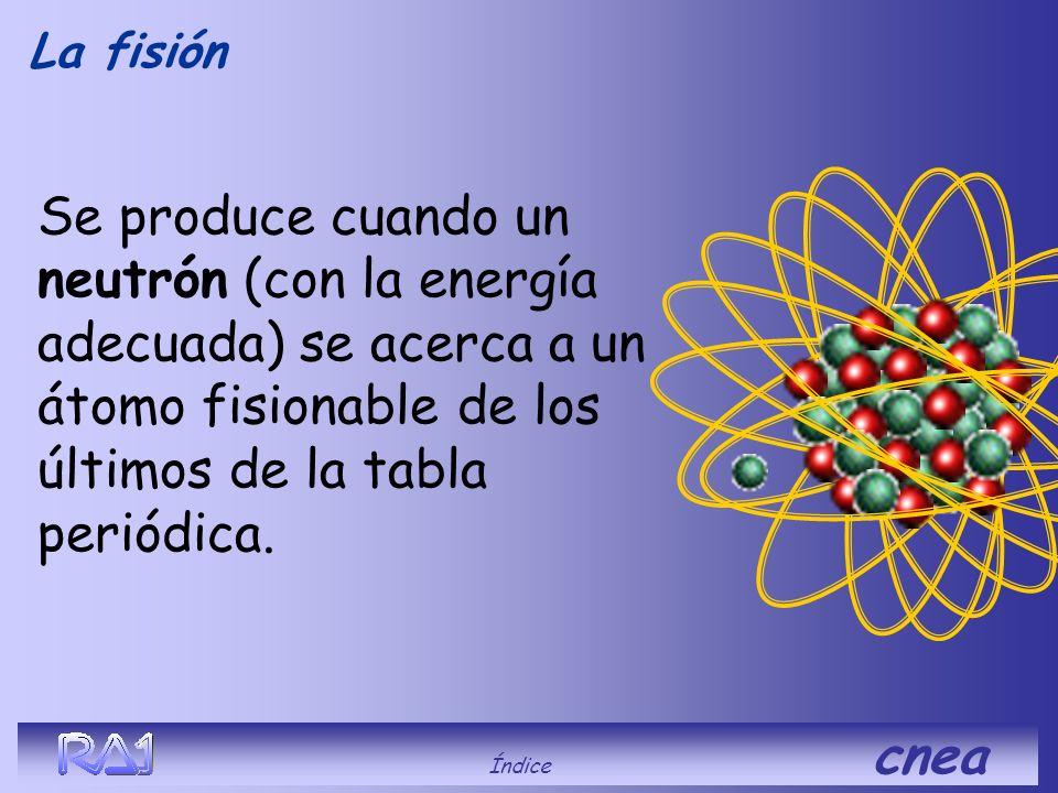 La fisión ¿Qué es? Índice cnea
