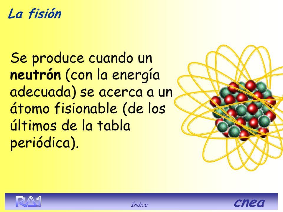 La fisión Se produce cuando un neutrón (con la energía adecuada) se acerca a un átomo fisionable (de los últimos de la tabla periódica). Índice cnea