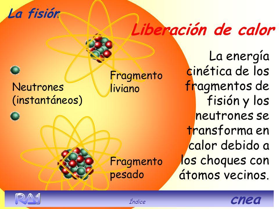 El núcleo se rompe en fragmentos más pequeños (productos de fisión) y se liberan neutrones de alta energía. La fisión Neutrones (instantáneos) Fragmen