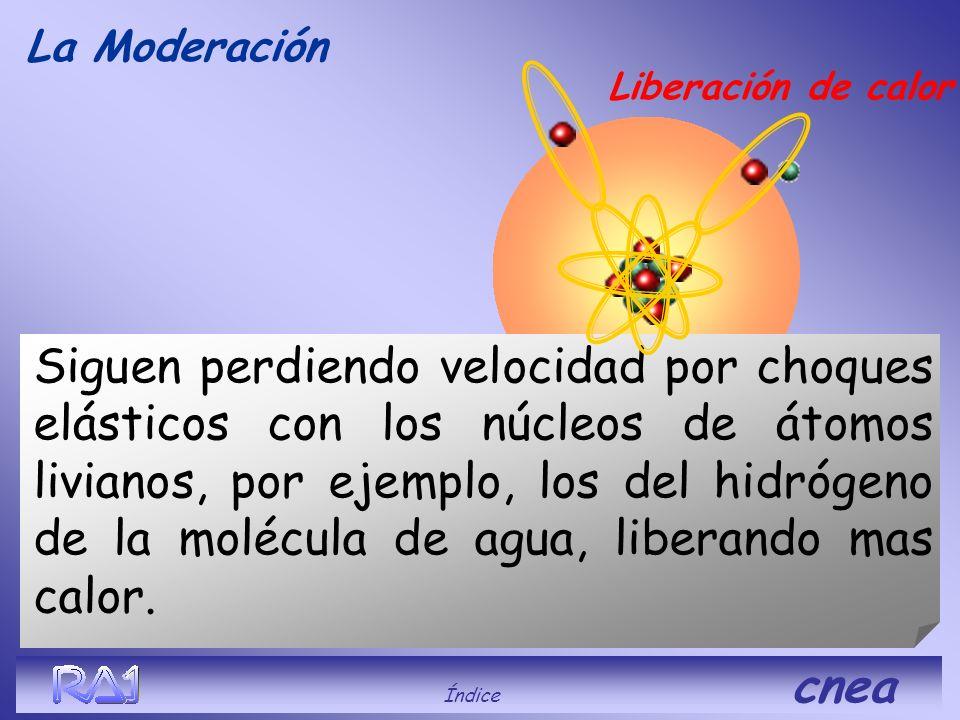 La Moderación Índice cnea Los neutrones con alta energía disminuyen su velocidad por choques inelásticos con los núcleos de U238, los que luego se des