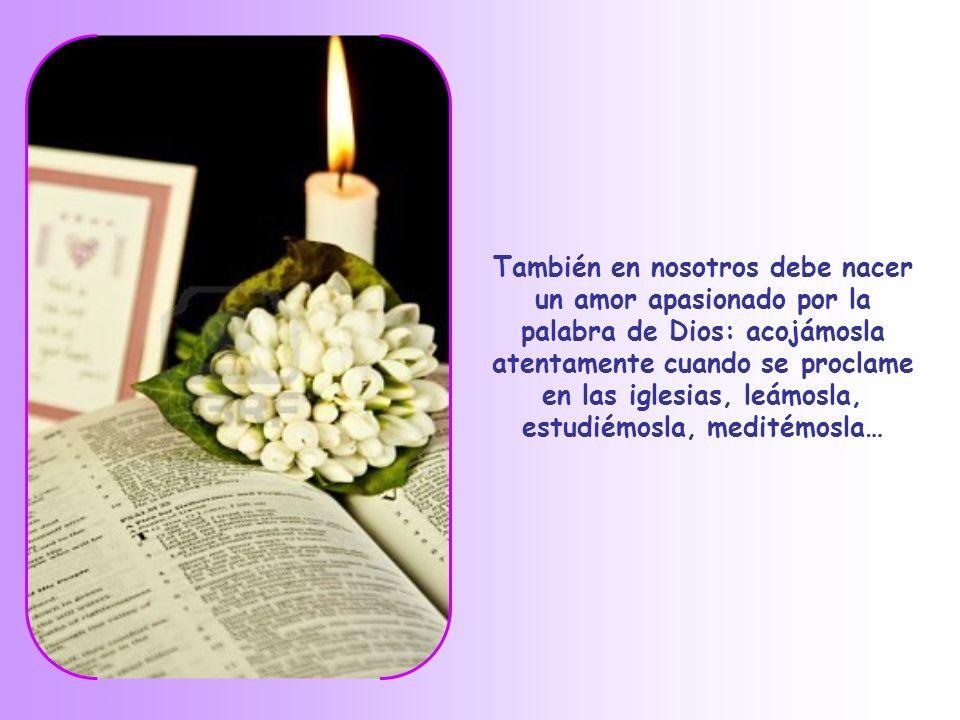 En este tiempo de Cuaresma en que nos preparamos a la gran fiesta de la Resurrección, debemos seguir de verdad la enseñanza del único Maestro y hacern