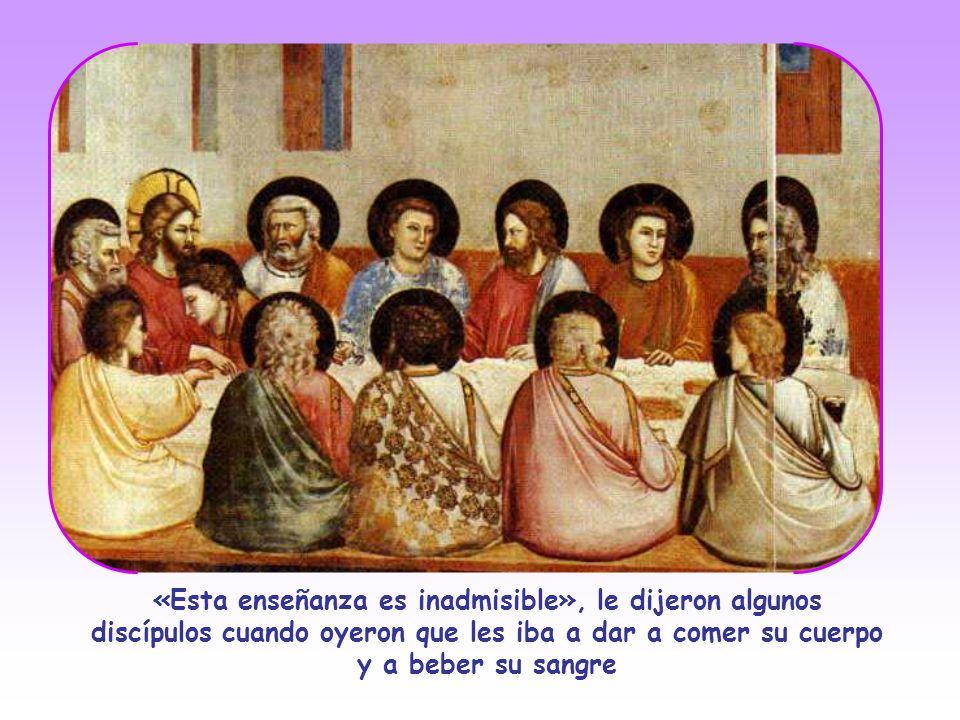 Con sus apóstoles Jesús profundiza aún más: habla abiertamente del Padre y de las cosas del Cielo sin recurrir ya a semejanzas. Conquistados por sus p