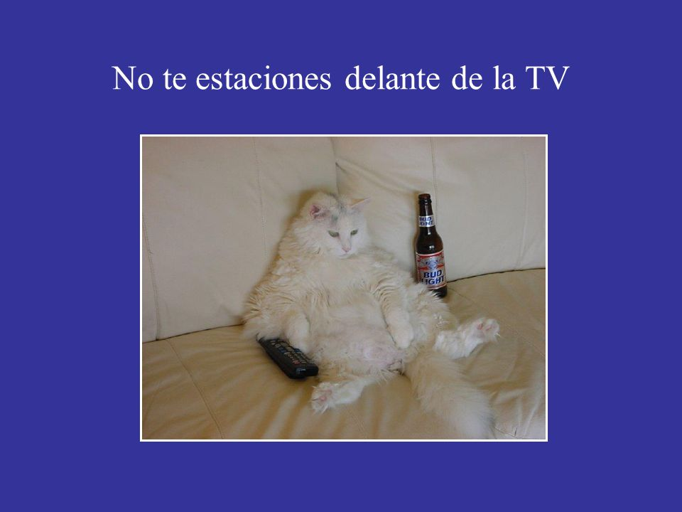 No te estaciones delante de la TV