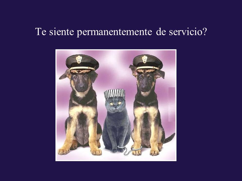 Te siente permanentemente de servicio?
