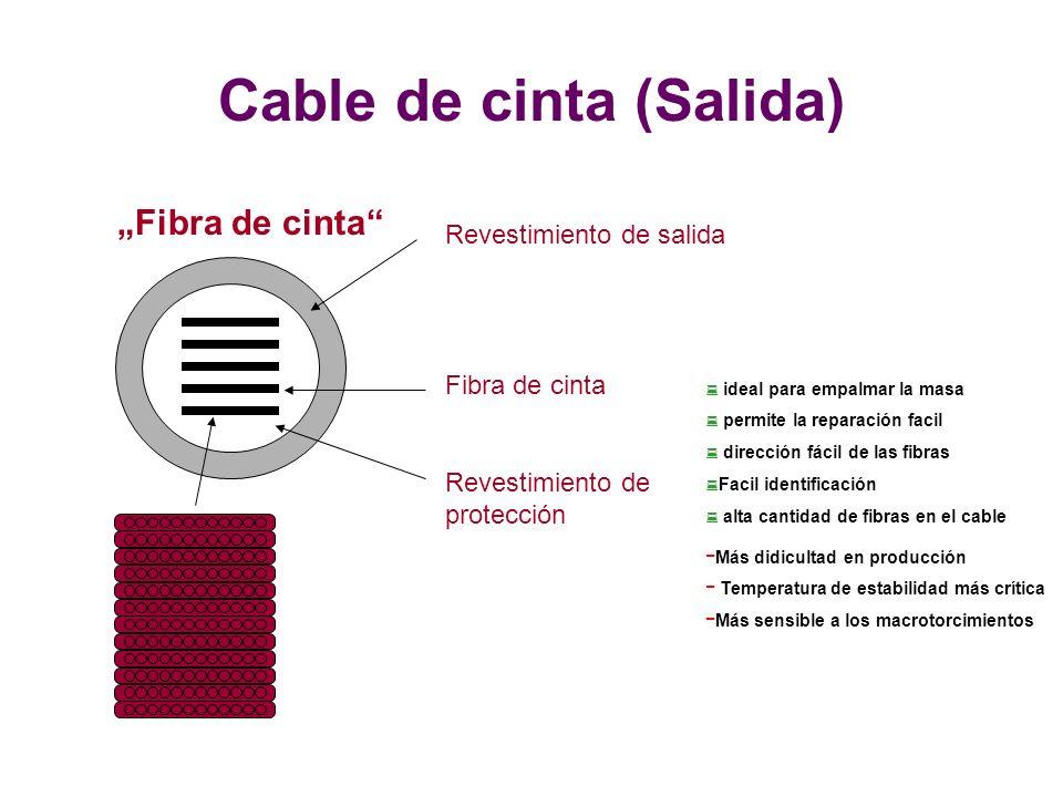 Revestimiento de protección Fibra de cinta Revestimiento de salida Fibra de cinta Cable de cinta (Salida) : ideal para empalmar la masa : permite la reparación facil : dirección fácil de las fibras : Facil identificación : alta cantidad de fibras en el cable - Más didicultad en producción - Temperatura de estabilidad más crítica - Más sensible a los macrotorcimientos