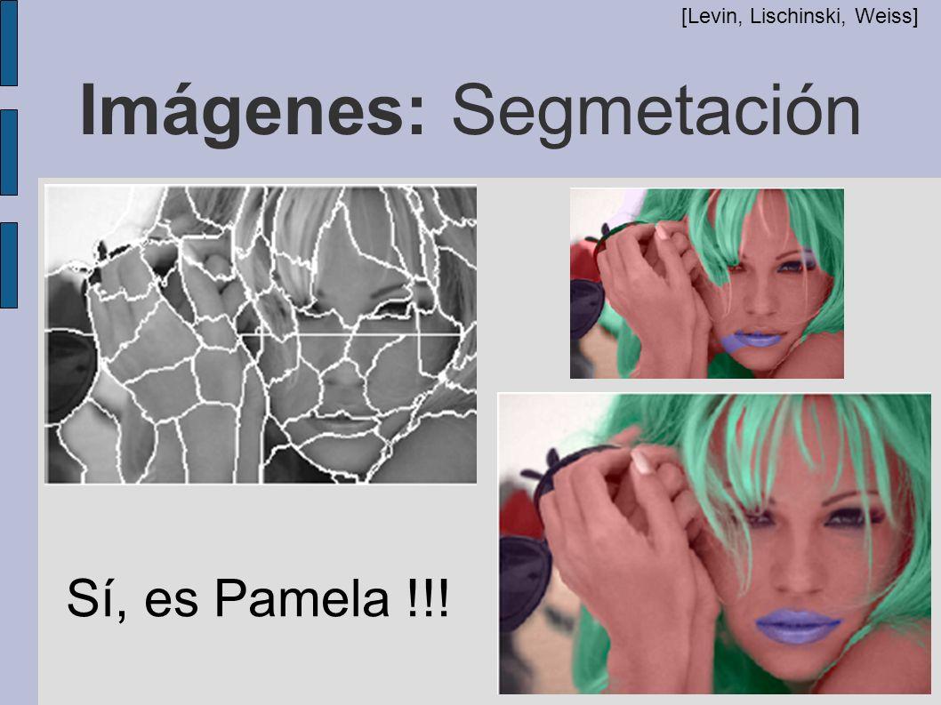 Imágenes: Segmetación [Levin, Lischinski, Weiss] Sí, es Pamela !!!