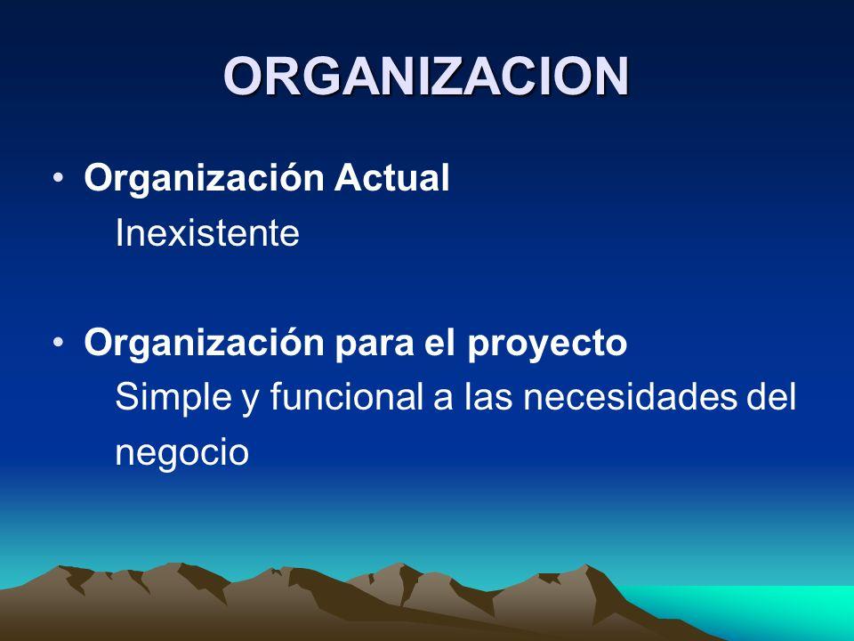 ORGANIZACION Organización Actual Inexistente Organización para el proyecto Simple y funcional a las necesidades del negocio