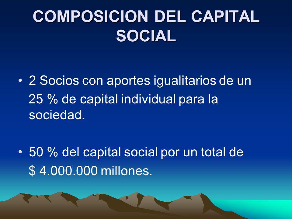 COMPOSICION DEL CAPITAL SOCIAL 2 Socios con aportes igualitarios de un 25 % de capital individual para la sociedad. 50 % del capital social por un tot