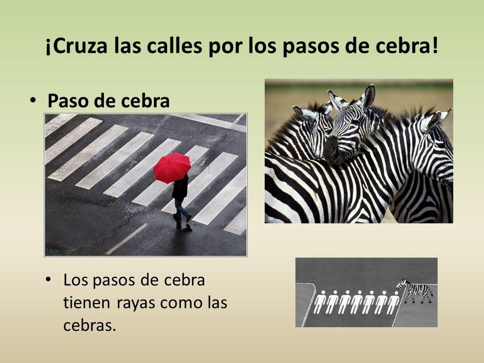 ¡Cruza las calles por los pasos de cebra! Paso de cebra Los pasos de cebra tienen rayas como las cebras.