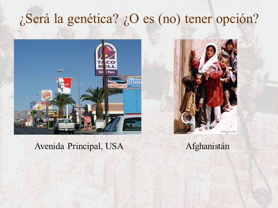 ¿Será la genética? ¿O es (no) tener opción? Avenida Principal, USAAfghanistán