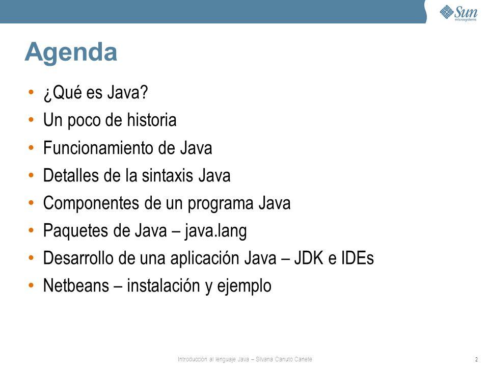 Introducción al lenguaje Java – Silvana Canuto Canete 2 Agenda ¿Qué es Java? Un poco de historia Funcionamiento de Java Detalles de la sintaxis Java C