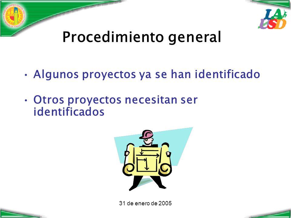 31 de enero de 2005 Procedimiento general Algunos proyectos ya se han identificado Otros proyectos necesitan ser identificados