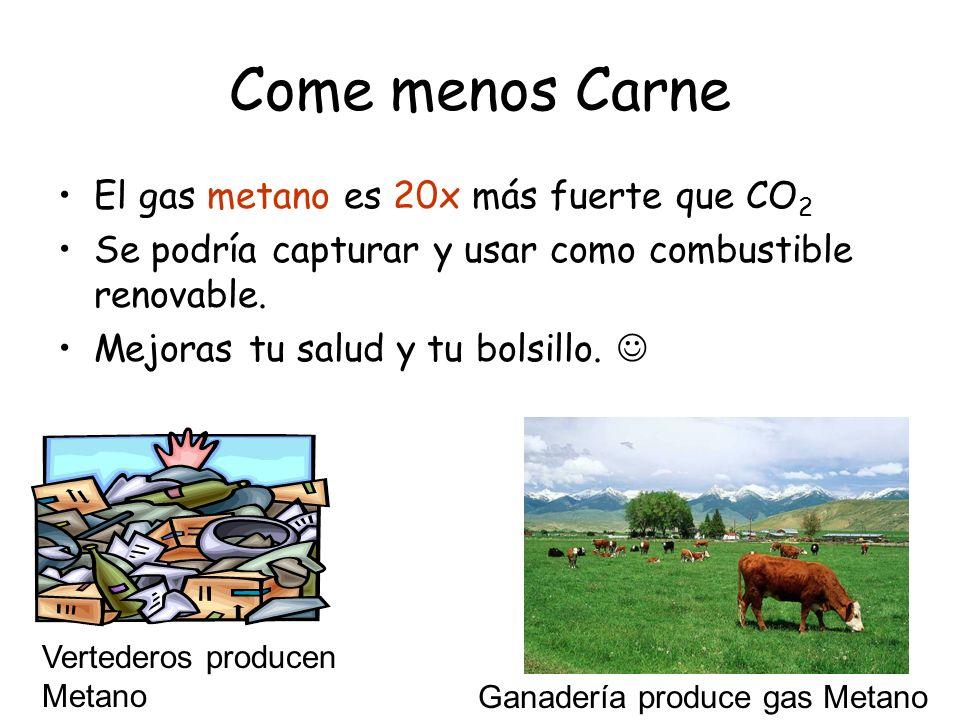 Come menos Carne El gas metano es 20x más fuerte que CO 2 Se podría capturar y usar como combustible renovable.