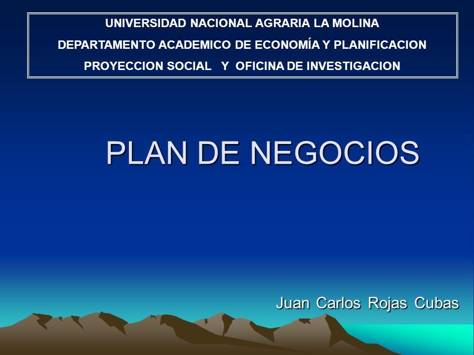PLAN DE NEGOCIOS Juan Carlos Rojas Cubas UNIVERSIDAD NACIONAL AGRARIA LA MOLINA DEPARTAMENTO ACADEMICO DE ECONOMÍA Y PLANIFICACION PROYECCION SOCIAL Y