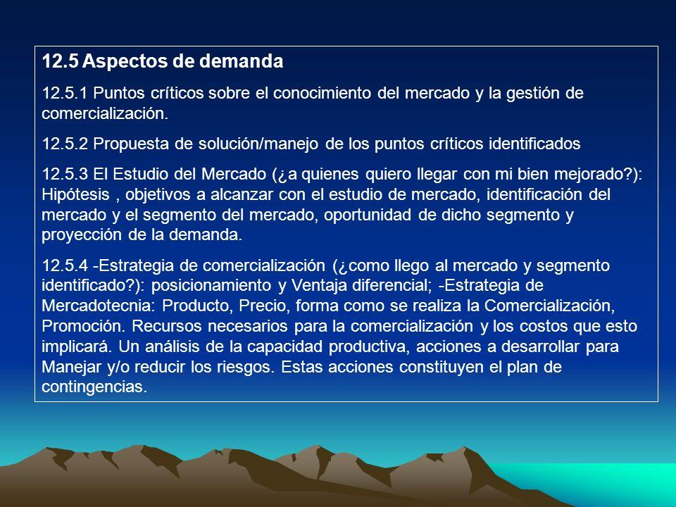 12.5 Aspectos de demanda 12.5.1 Puntos críticos sobre el conocimiento del mercado y la gestión de comercialización. 12.5.2 Propuesta de solución/manej