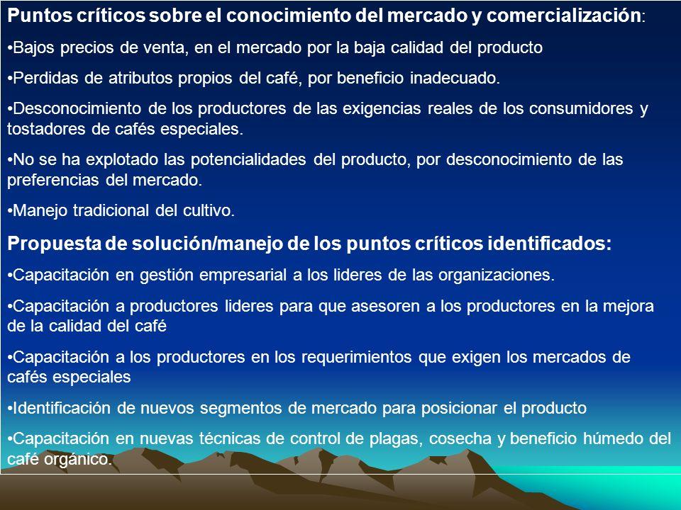 Puntos críticos sobre el conocimiento del mercado y comercialización : Bajos precios de venta, en el mercado por la baja calidad del producto Perdidas