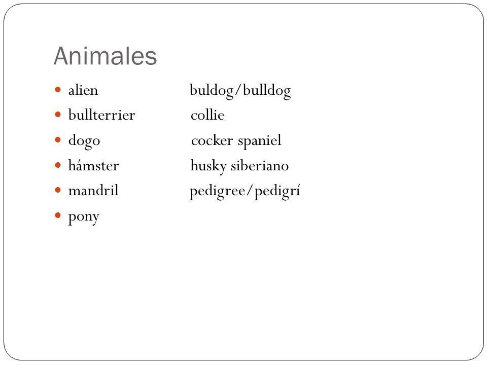 Animales alien buldog/bulldog bullterrier collie dogo cocker spaniel hámster husky siberiano mandril pedigree/pedigrí pony