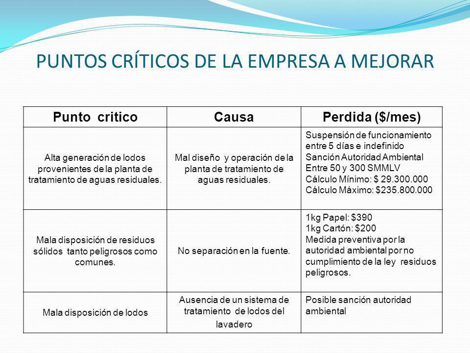 PUNTOS CRÍTICOS DE LA EMPRESA A MEJORAR Punto criticoCausaPerdida ($/mes) Alta generación de lodos provenientes de la planta de tratamiento de aguas r