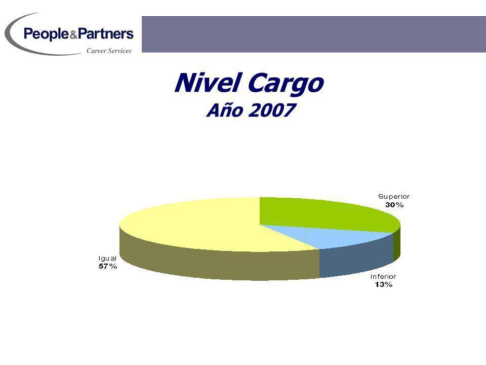 Nivel Cargo Año 2007