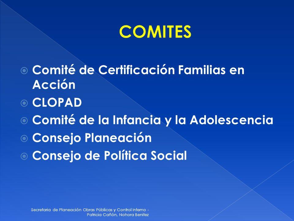 Secretaria de Planeación Obras Públicas y Control Interno - Patricia Cañón, Nohora Benitez Comité de Certificación Familias en Acción CLOPAD Comité de la Infancia y la Adolescencia Consejo Planeación Consejo de Política Social