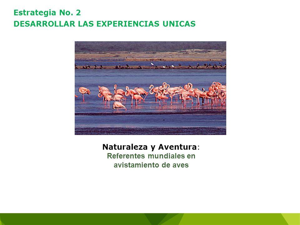 Estrategia No. 2 DESARROLLAR LAS EXPERIENCIAS UNICAS Naturaleza y Aventura: Referentes mundiales en avistamiento de aves