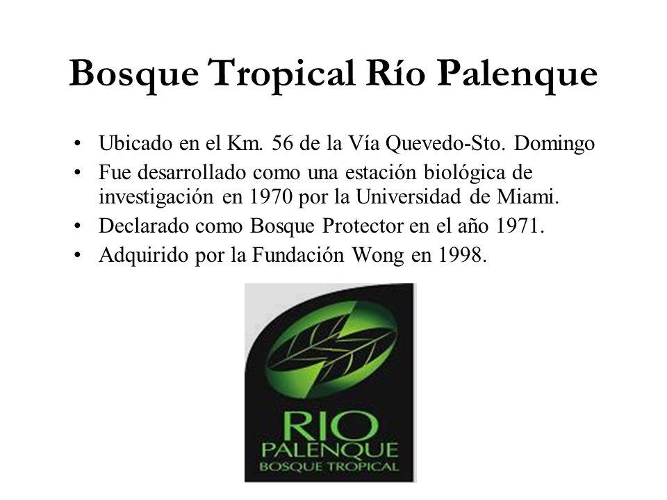 Bosque Tropical Río Palenque Ubicado en el Km. 56 de la Vía Quevedo-Sto. Domingo Fue desarrollado como una estación biológica de investigación en 1970