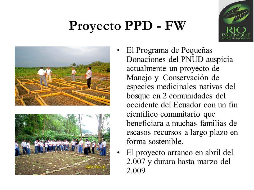 Proyecto PPD - FW El Programa de Pequeñas Donaciones del PNUD auspicia actualmente un proyecto de Manejo y Conservación de especies medicinales nativa