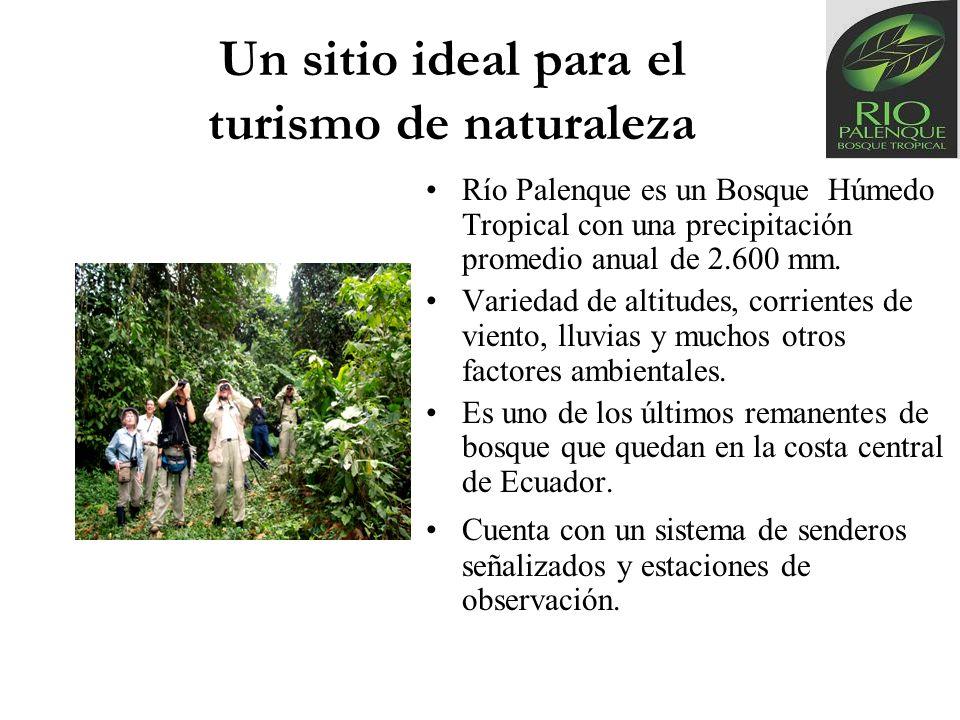 Un sitio ideal para el turismo de naturaleza Río Palenque es un Bosque Húmedo Tropical con una precipitación promedio anual de 2.600 mm. Variedad de a
