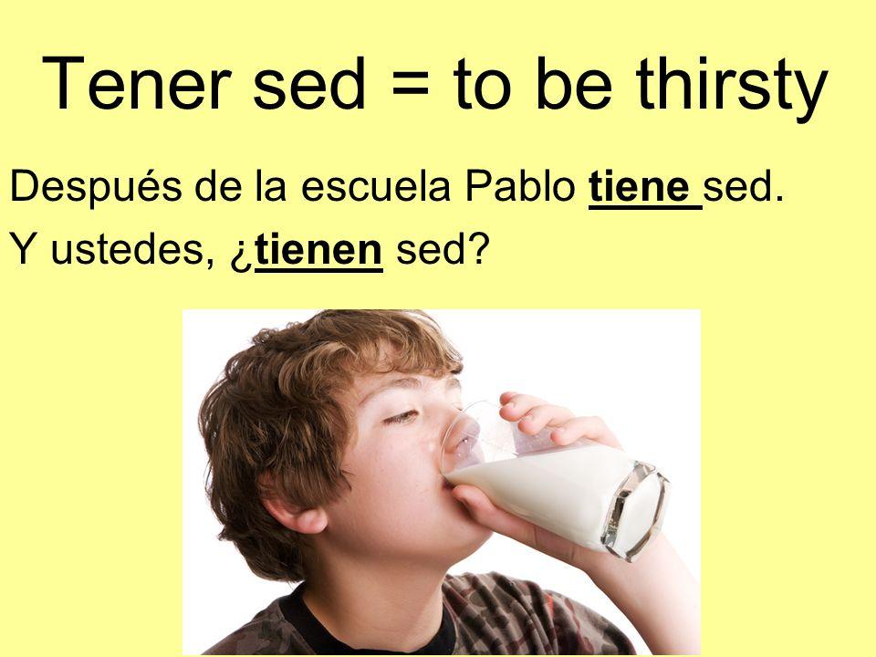 Tener sed = to be thirsty Después de la escuela Pablo tiene sed. Y ustedes, ¿tienen sed?