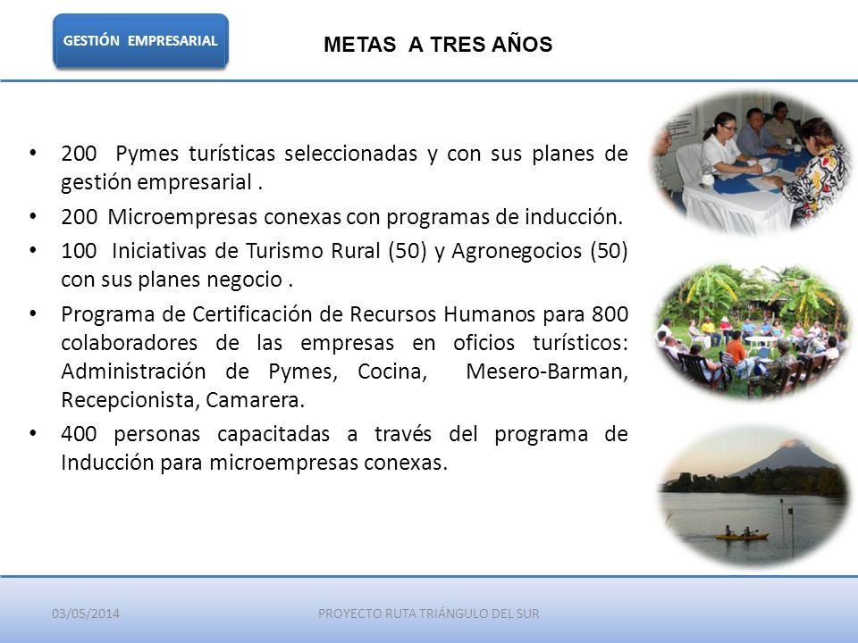 03/05/2014PROYECTO RUTA TRIÁNGULO DEL SUR GESTIÓN EMPRESARIAL METAS A TRES AÑOS 200 Pymes turísticas seleccionadas y con sus planes de gestión empresa
