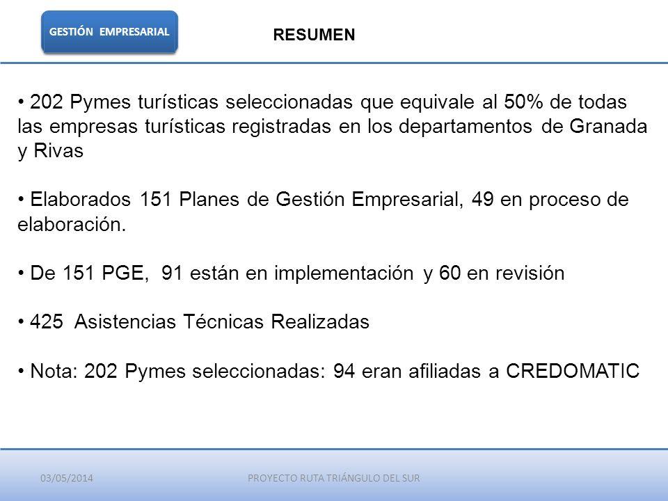 03/05/2014PROYECTO RUTA TRIÁNGULO DEL SUR GESTIÓN EMPRESARIAL RESUMEN 202 Pymes turísticas seleccionadas que equivale al 50% de todas las empresas tur