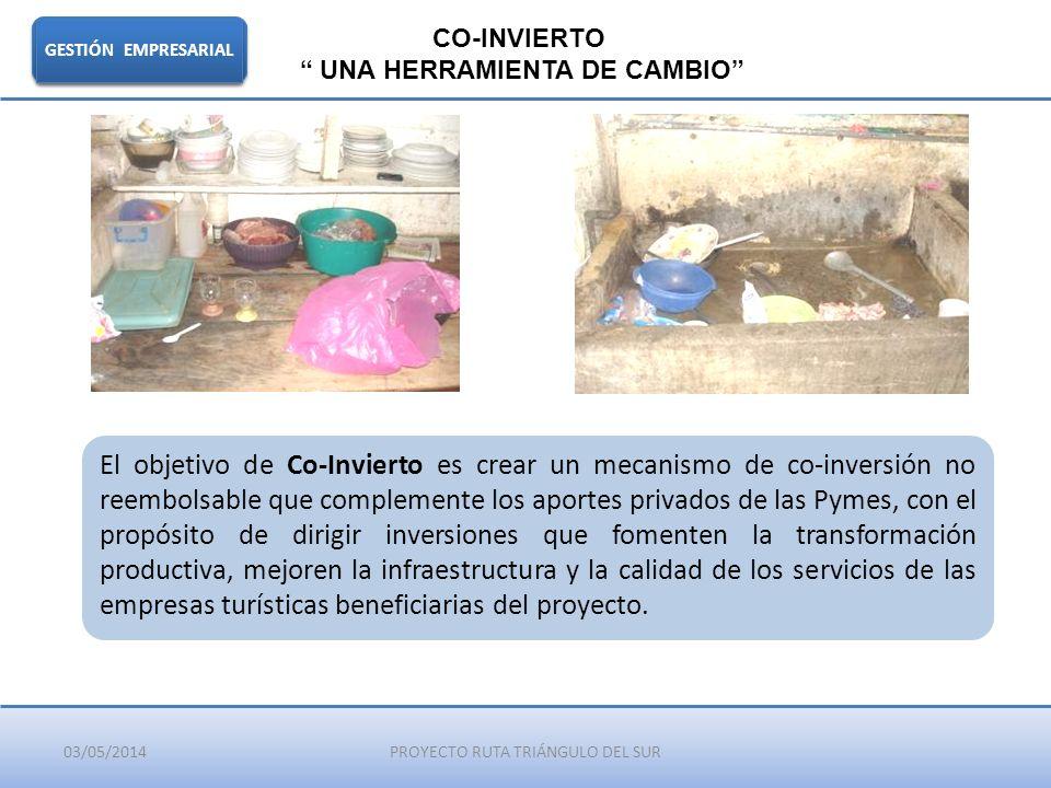 03/05/2014PROYECTO RUTA TRIÁNGULO DEL SUR GESTIÓN EMPRESARIAL CO-INVIERTO UNA HERRAMIENTA DE CAMBIO El objetivo de Co-Invierto es crear un mecanismo d