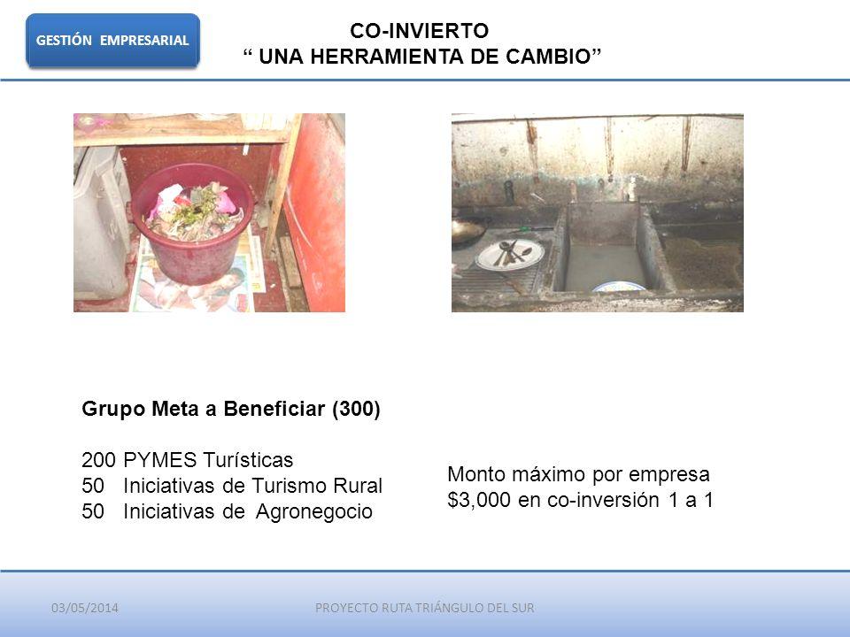 03/05/2014PROYECTO RUTA TRIÁNGULO DEL SUR GESTIÓN EMPRESARIAL CO-INVIERTO UNA HERRAMIENTA DE CAMBIO Grupo Meta a Beneficiar (300) 200 PYMES Turísticas