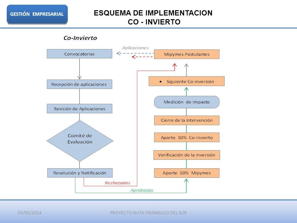03/05/2014PROYECTO RUTA TRIÁNGULO DEL SUR GESTIÓN EMPRESARIAL ESQUEMA DE IMPLEMENTACION CO - INVIERTO