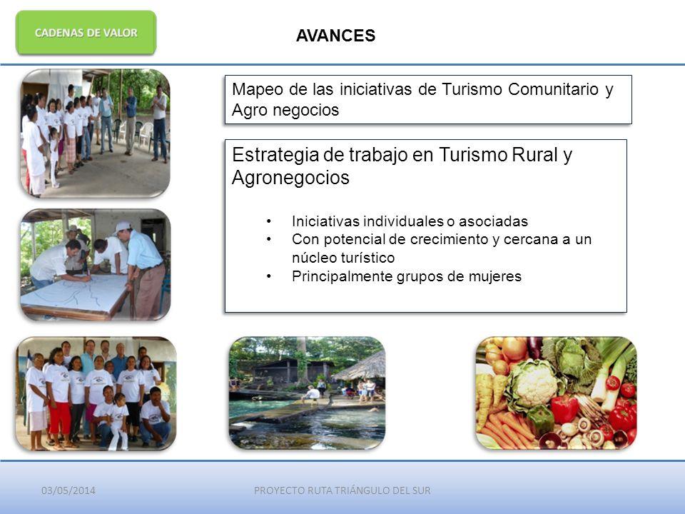 03/05/2014PROYECTO RUTA TRIÁNGULO DEL SUR AVANCES Mapeo de las iniciativas de Turismo Comunitario y Agro negocios Estrategia de trabajo en Turismo Rur