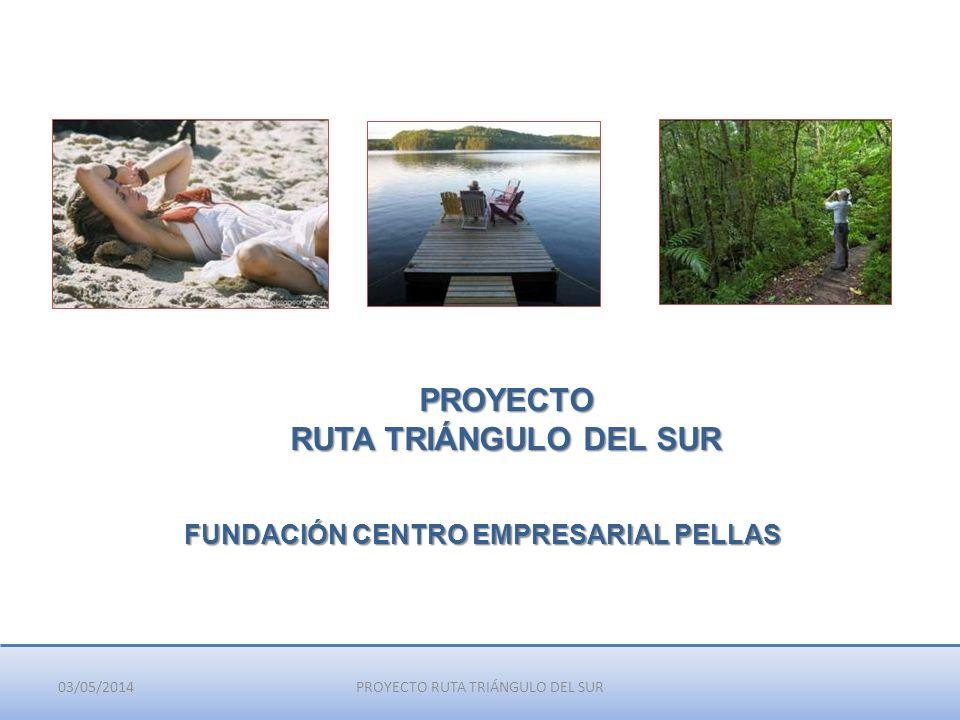 03/05/2014PROYECTO RUTA TRIÁNGULO DEL SUR PROYECTO RUTA TRIÁNGULO DEL SUR FUNDACIÓN CENTRO EMPRESARIAL PELLAS