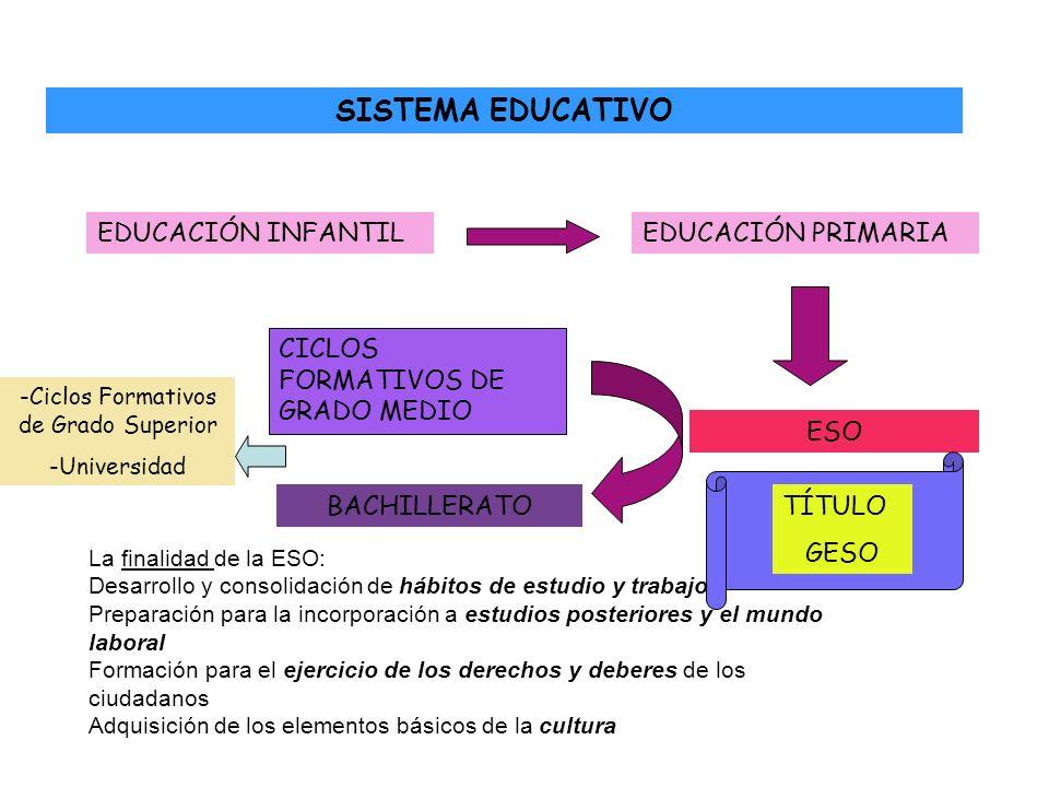 SISTEMA EDUCATIVO EDUCACIÓN INFANTILEDUCACIÓN PRIMARIA ESO TÍTULO GESO BACHILLERATO CICLOS FORMATIVOS DE GRADO MEDIO -Ciclos Formativos de Grado Super