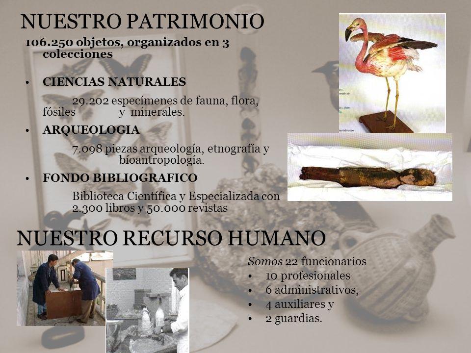 106.250 objetos, organizados en 3 colecciones CIENCIAS NATURALES 29.202 especímenes de fauna, flora, fósiles y minerales. ARQUEOLOGIA 7.098 piezas arq