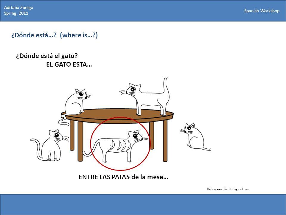 Spanish Workshop ¿Dónde está…? (where is…?) ¿Dónde está el gato? EL GATO ESTA… Halloweeninfantil.blogspot.com ENTRE LAS PATAS de la mesa… Adriana Zuni