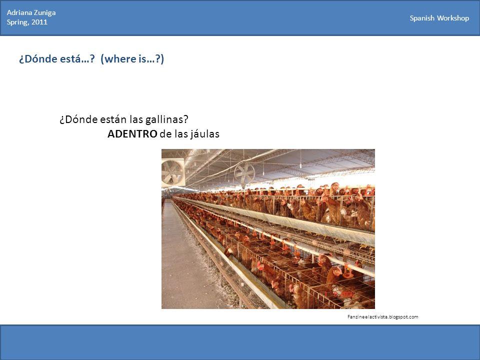 Spanish Workshop ¿Dónde está…? (where is…?) Fanzineelactivista.blogspot.com Adriana Zuniga Spring, 2011 ¿Dónde están las gallinas? ADENTRO de las jául