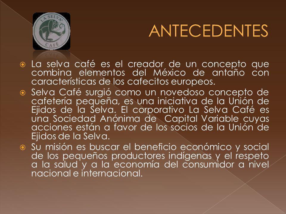 La selva café es el creador de un concepto que combina elementos del México de antaño con características de los cafecitos europeos. Selva Café surgió