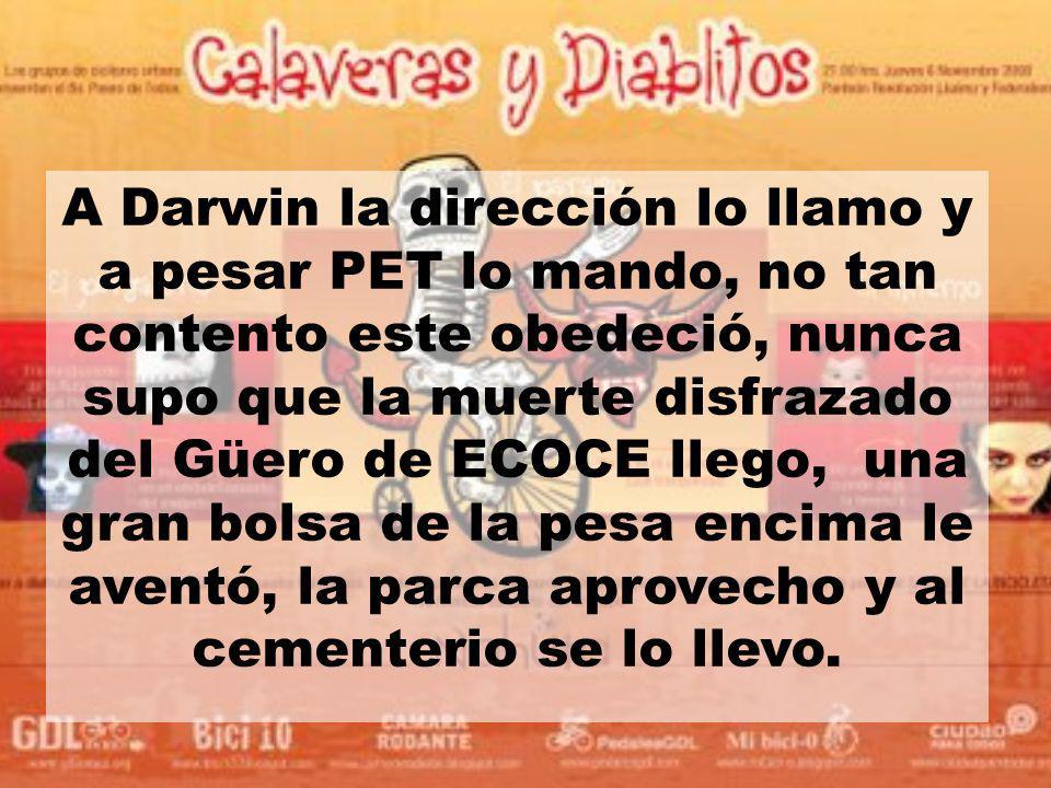 A Darwin la dirección lo llamo y a pesar PET lo mando, no tan contento este obedeció, nunca supo que la muerte disfrazado del Güero de ECOCE llego, un