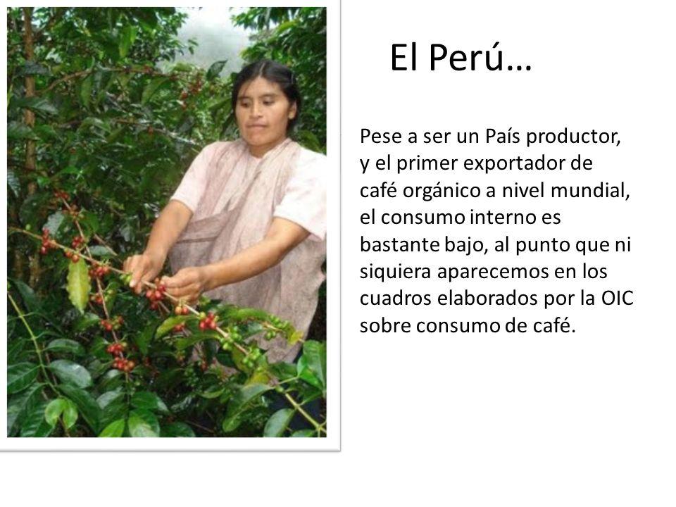 El Perú… Pese a ser un País productor, y el primer exportador de café orgánico a nivel mundial, el consumo interno es bastante bajo, al punto que ni s