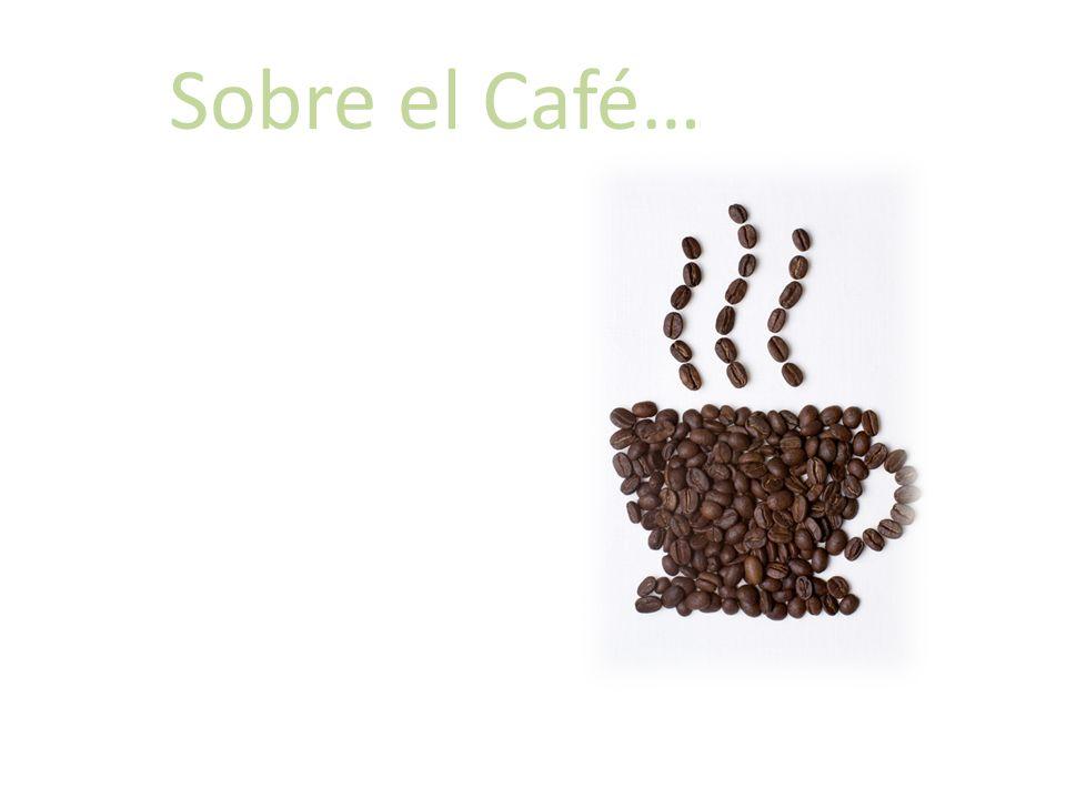 Sobre el Café…