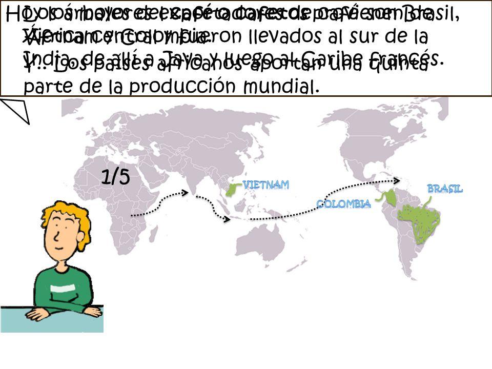 Los árboles del café o cafetos provienen de África central y fueron llevados al sur de la India, de allí a Java y luego al Caribe francés. Hoy los may