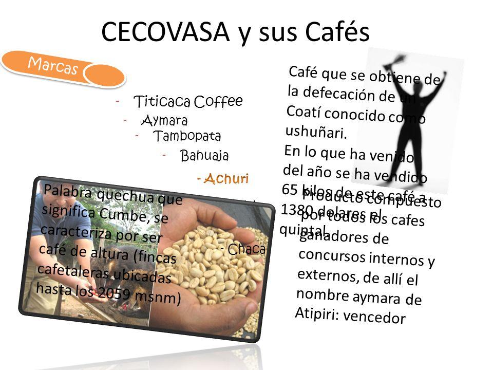 CECOVASA y sus Cafés -Titicaca Coffee -Aymara Marcas -Tambopata -Bahuaja Café que se obtiene de la defecación de un Coatí conocido como ushuñari. En l