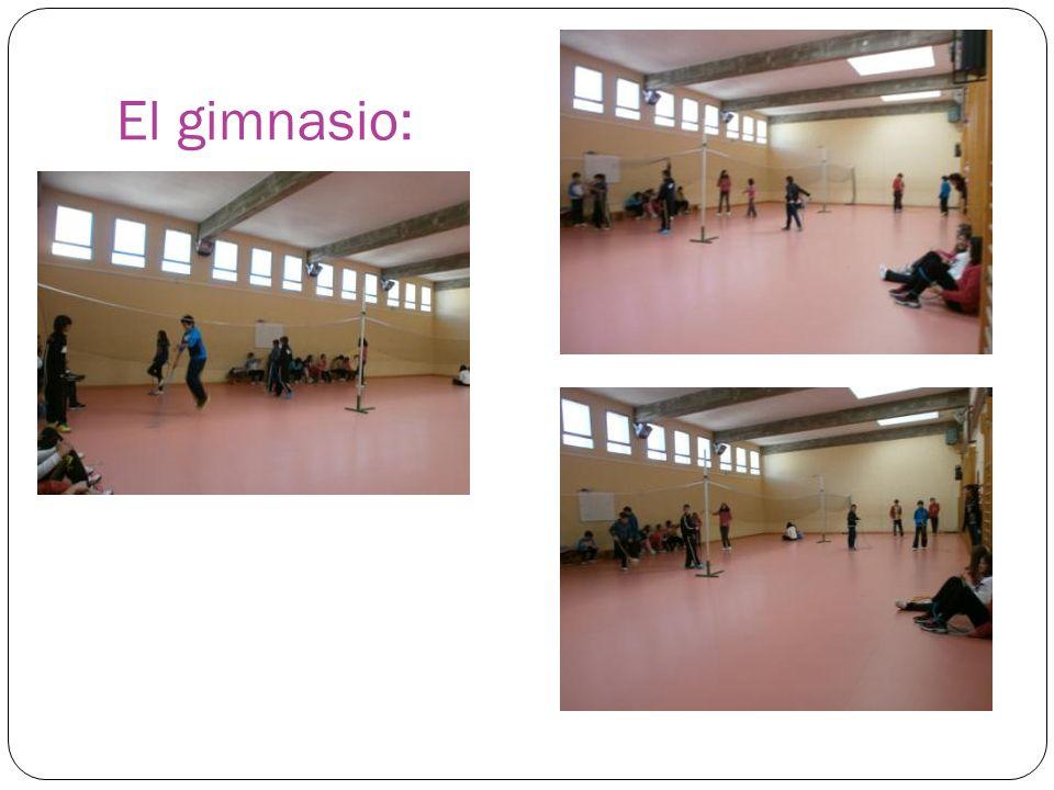 El gimnasio: