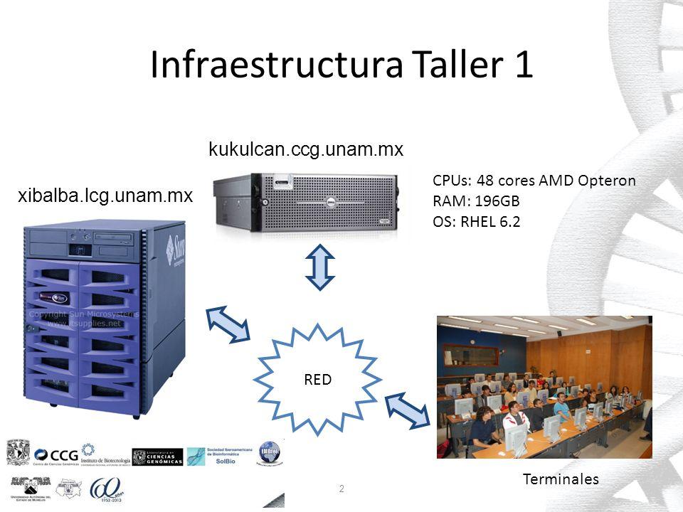 Infraestructura Taller 2 RED Terminales 132.248.220.122 (litza) 3 kabah.lcg.unam.mx CPUs: 32 cores Intel Xeon RAM: 256GB OS: RHEL 6.4