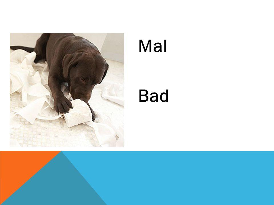 Mal Bad
